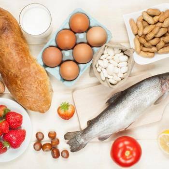 12054:食品学-Ⅰ「アレルゲンの基本」